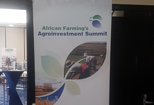 Harnessing new investment opportunities in Africa's agricultural sector