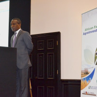 His Excellency Kabiru Bala, the deputy high commissioner Nigeria